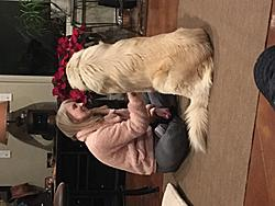 Click image for larger version.  Name:AMy and Chief.JPG Views:4 Size:1.30 MB ID:89276